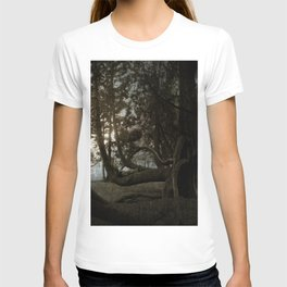 The Man in the Tree. T-shirt