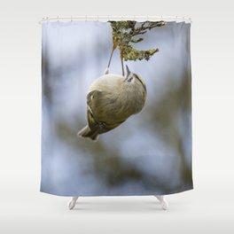 Goldcrest   Yellow Crown Bird   Bird Photography Shower Curtain