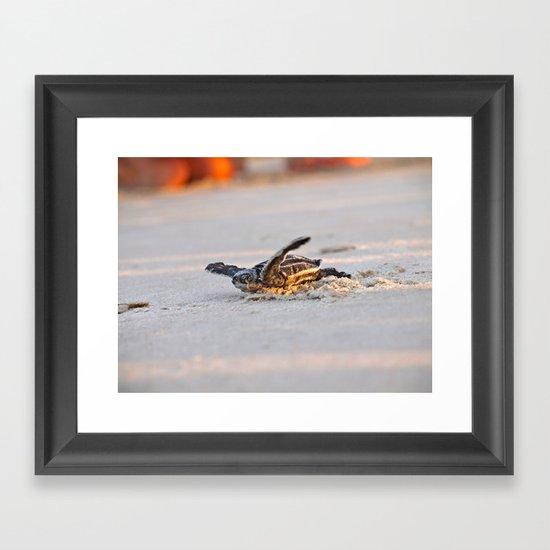 Leatherback Framed Art Print