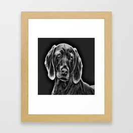 Weimaraner - The Gray Ghost Framed Art Print