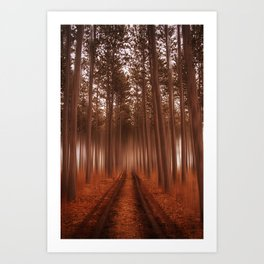 Beyond the Forest Art Print