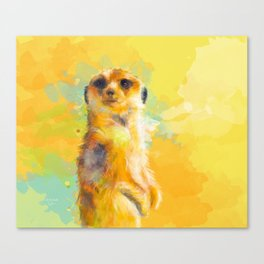 Dear Little Meerkat Canvas Print