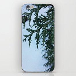 Crispy Leaves iPhone Skin