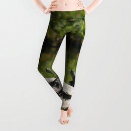 Three Turtles Photography Print Leggings