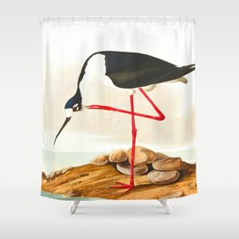 Long-legged Avocet Shower Curtain