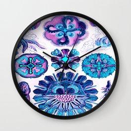 Ernst Haeckel Discomedusae 98th Plate Wall Clock