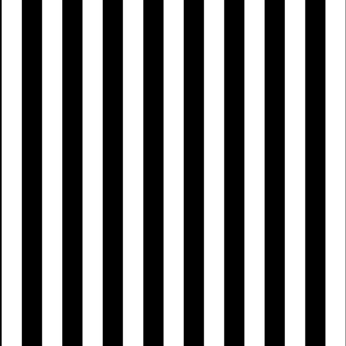 Vertical Stripes (Black/White) Leggings