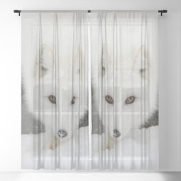 Fixated Sheer Curtain