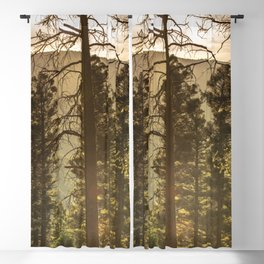 Mountain Forest New Mexico - Nature Photography Blackout Curtain