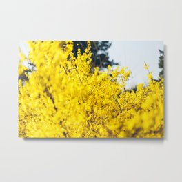 It Was All Yellow Metal Print