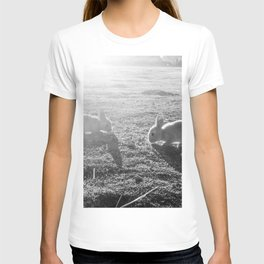 Bunny // Black and White Cute Nursery Photograph Adorable Baby Bunnies in the Field T-shirt
