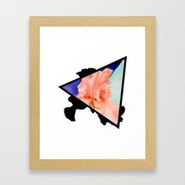 Ironic Iris Triangle Framed Art Print