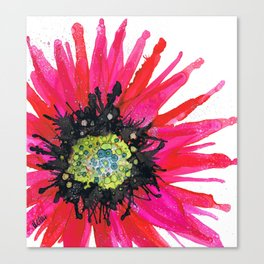 Daisy Red Canvas Print