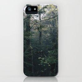 Haines Falls #04 iPhone Case