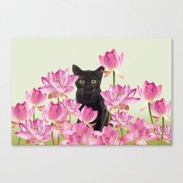 Lotus Flower Blossoms Black Cat Canvas Print