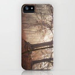 Autumn Fantasy : Mist and Mistery iPhone Case
