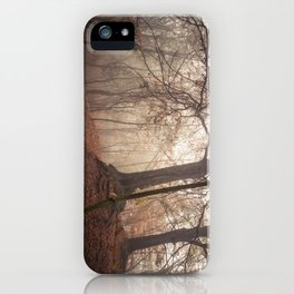 Autumn Fantasy : Mist and Mistery iPhone Case