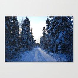 AbitibiWinter18 Canvas Print