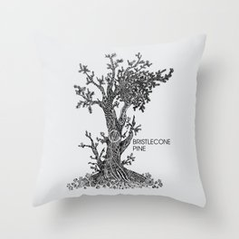 Bristlecone Pine Sketch Throw Pillow