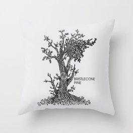 Bristlecone Pine Sketch Throw Pillow