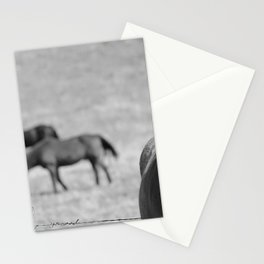 Extremely Photogenic Horse B&W Stationery Cards