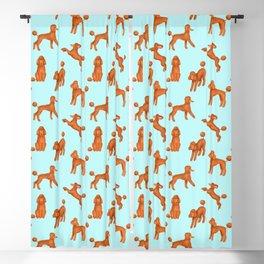 Red Poodles Pattern (Light Blue Background) Blackout Curtain