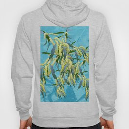 Beautiful Australian Wattle blooms against a textured blue background Hoody