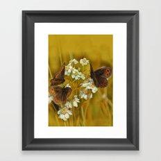 Summery Butterflies on Gold Framed Art Print