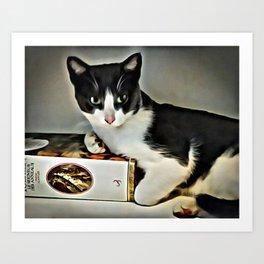 Black & White Kitty Art Print