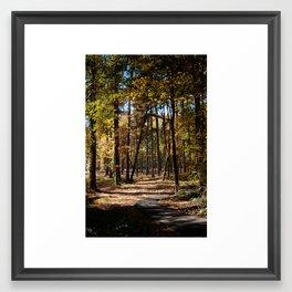 Kiroli Park, part one Framed Art Print
