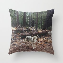 Injured Coyote Throw Pillow
