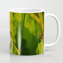 Last Dandelion in Sunlight Coffee Mug