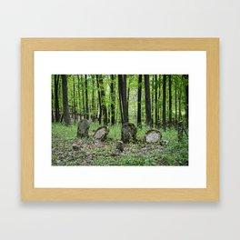 Raccoon Creek State Park - Kings Cemetery Framed Art Print