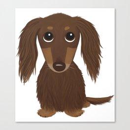 Longhaired Chocolate Dachshund Canvas Print
