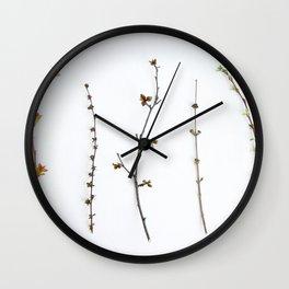 Indoor Garden Wall Clock