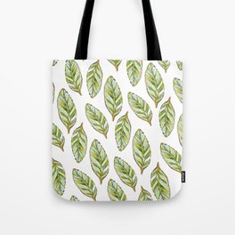 Soft Calathea leaves_green & white watercolour & ink Tote Bag