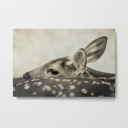 FAWN - Old Friends Collection Metal Print