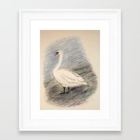 swan Framed Art Prints featuring Swan by Lyubov Fonareva