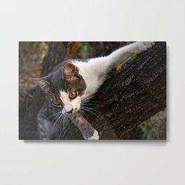 Cat on the Tree Metal Print