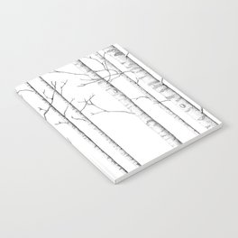 The birch forest Notebook