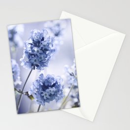 Lavender Blue 87 Stationery Cards
