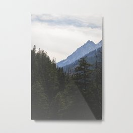 Wallowa Trees Metal Print