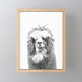Black and White Alpaca Framed Mini Art Print