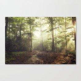 german rain forest Canvas Print