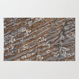 Cracked Stone Striations Rug
