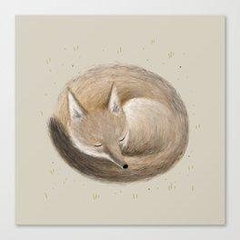 Swift Fox Sleeping Canvas Print