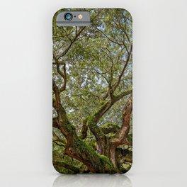 ANGEL OAK TREE CHARLESTON SOUTH CAROLINA DRAMATIC NATURE LANDSCAPE iPhone Case