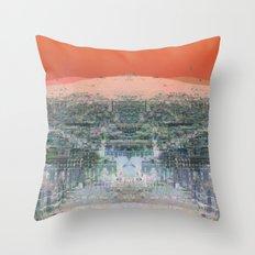 BAR#8569 Throw Pillow