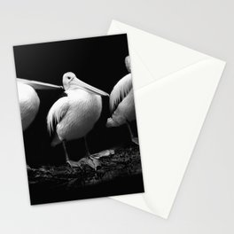 Pelican Trio black and white Stationery Cards