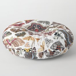 Moths of North America Floor Pillow